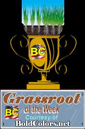 Award-grassroots