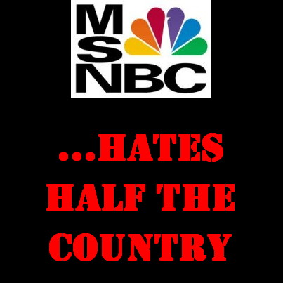 MSNBC: A Media Campaign to Insult and Smear Conservatives